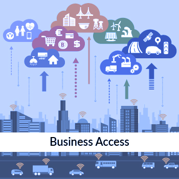 Business Access