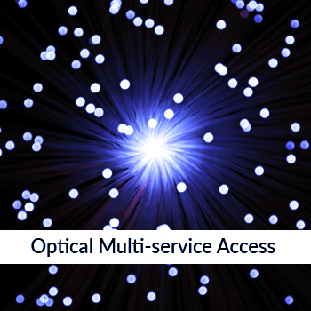 Optical Multi-service access